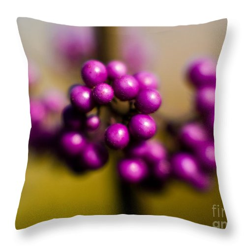 Beauty Berries Throw Pillow featuring the photograph Blur Berries by Mike Reid