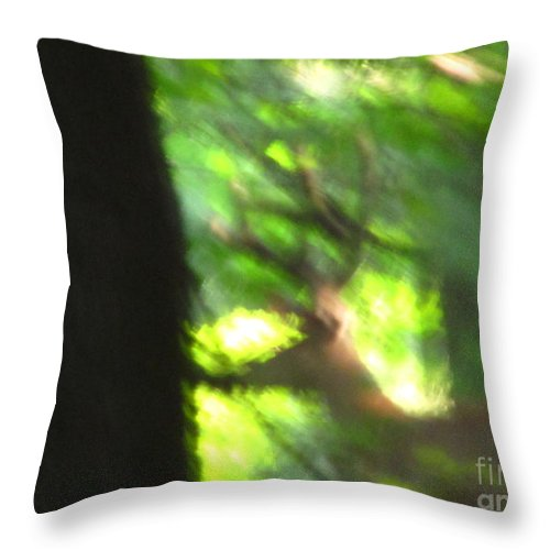 Male White Tailed Deer Images White Tailed Deer Buck Monster Buck Blurry Buck Mature Forest Buck Photographs Big Buck Images No Hunting Better Alive Preserve Mature Forest Habitat Huge Rack Images Big Rack Throw Pillow featuring the photograph Blurry Buck by Joshua Bales