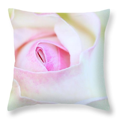 Macro Throw Pillow featuring the photograph Blushed Rose by Sabrina L Ryan