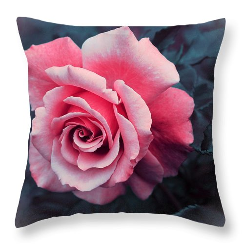 Blushing Rose Throw Pillow featuring the photograph Blushing Rose by Barbara Griffin