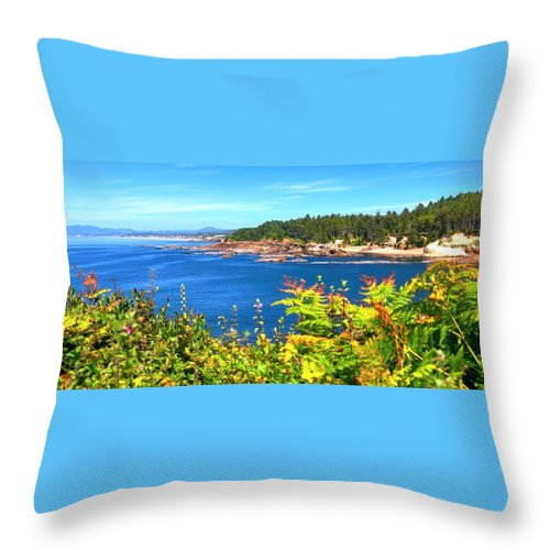 Coast Throw Pillow featuring the photograph Boiler Bay 17133 by Jerry Sodorff