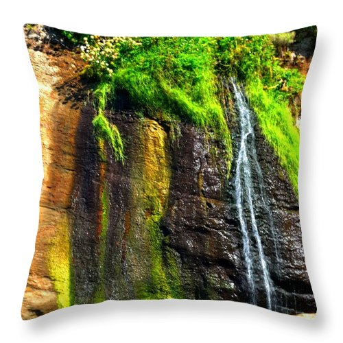 Coast Throw Pillow featuring the photograph Boiler Bay Stream 17178 by Jerry Sodorff