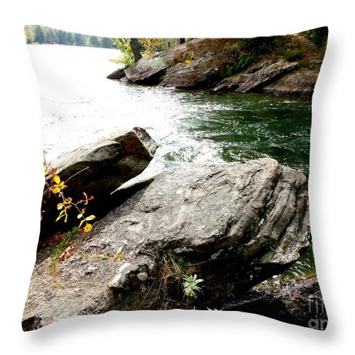 Rock Throw Pillow featuring the photograph Bold And The Beautiful by Gail Matthews