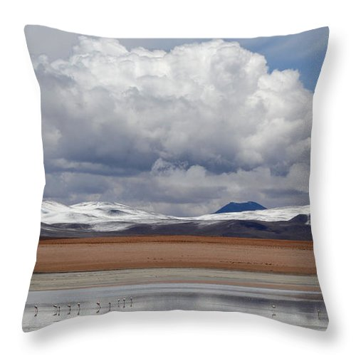 Bolivia Throw Pillow featuring the photograph Bolivia 6 by Vivian Christopher