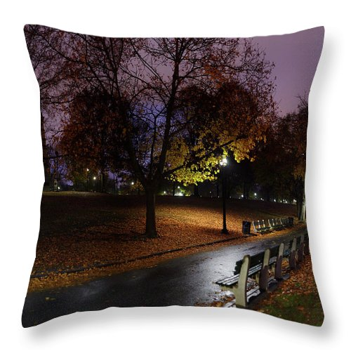 Tranquility Throw Pillow featuring the photograph Boston Common Park by By Yuri Kriventsov