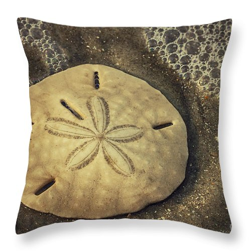 Sand Dollar Throw Pillow featuring the photograph Botany Bay Sand Dollar 1 by Carrie Cranwill