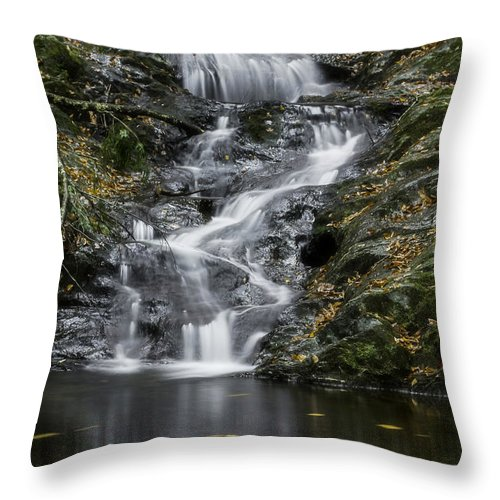 Tannery Falls Throw Pillow featuring the photograph Bottom Half Of Tannery Falls by Jatinkumar Thakkar