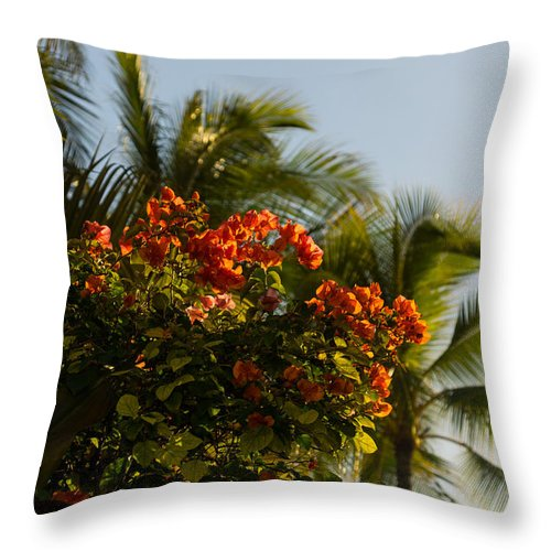 Bougainvillea Throw Pillow featuring the photograph Bougainvilleas And Palm Trees Swaying In The Wind In Waikiki Honolulu Hawaii by Georgia Mizuleva