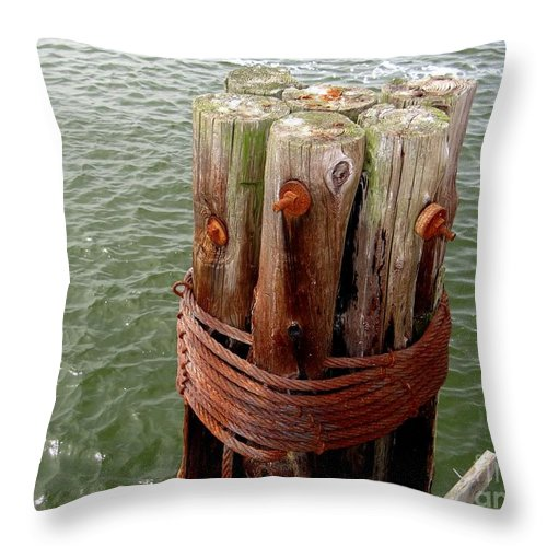 Poles Throw Pillow featuring the photograph Bound And Bolted by Ed Weidman