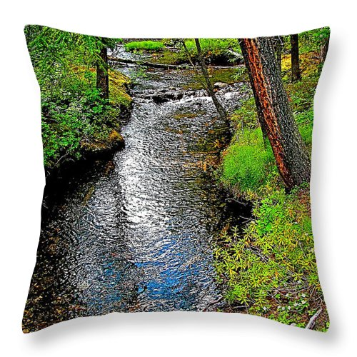 Bow River Near Lake Louise Campground In Banff National Park Throw Pillow featuring the photograph Bow River Near Lake Louise Campground In Banff National Park-ab by Ruth Hager