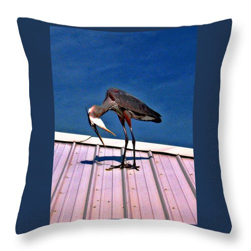 Heron Throw Pillow featuring the photograph Bowing Blue Heron by Marian Bell