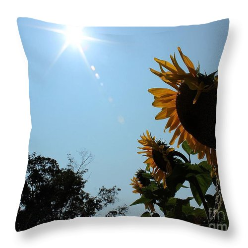 Sunflower Throw Pillow featuring the photograph Bowing To The Sun by Janice Byer