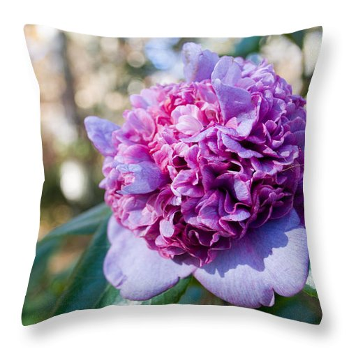 Flower Throw Pillow featuring the photograph Brain Flower by Breanna Calkins