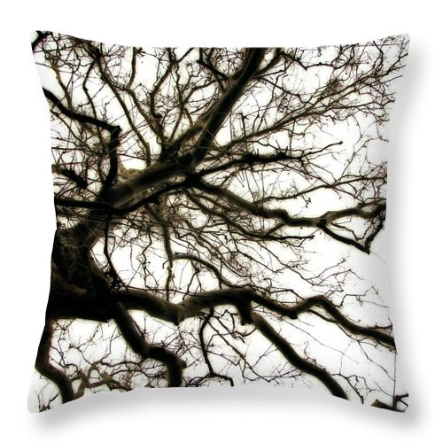 Branches Throw Pillow featuring the photograph Branches by Michelle Calkins