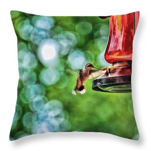 Hummingbird Throw Pillow featuring the digital art Breakfast by Anita Hubbard