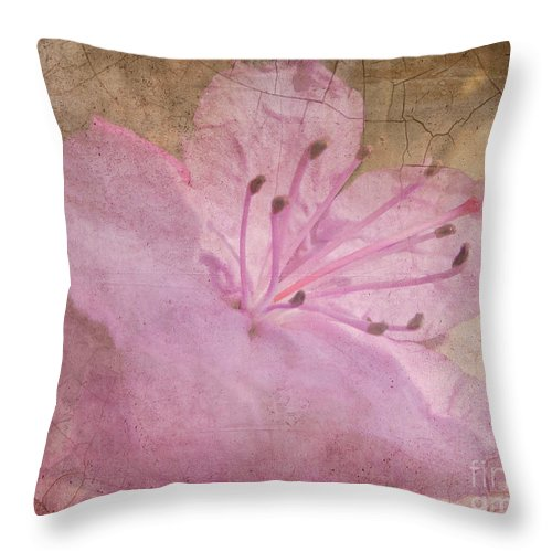 Spring Throw Pillow featuring the photograph Breaking Through by Arlene Carmel