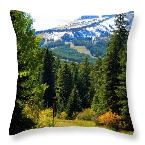 Breckenridge Throw Pillow featuring the photograph Breckenridge Fall by Michelle Frizzell-Thompson
