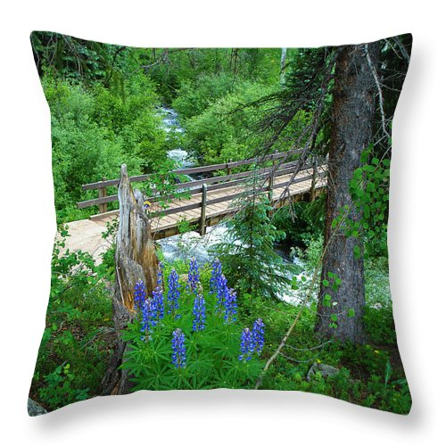 Lupine Throw Pillow featuring the photograph Bridge To Glory by Laurie Purcell