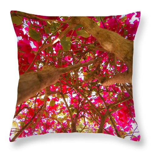 Antigua And Barbuda Throw Pillow featuring the photograph Bright Bougainvillea by Ferry Zievinger