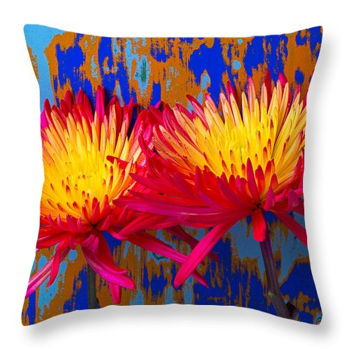 Two Throw Pillow featuring the photograph Bright Colorful Mums by Garry Gay