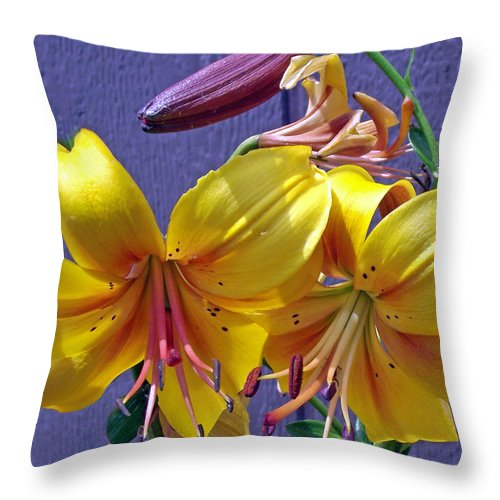 Bright Throw Pillow featuring the photograph Bright Yellow Lilies by Mike and Sharon Mathews