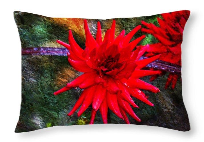 Autumn Throw Pillow featuring the photograph Brilliance In An Autumn Garden - Red Dahlia by Marie Jamieson