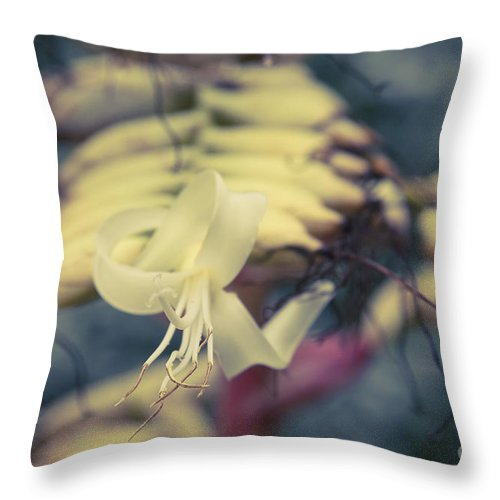 Aloha Throw Pillow featuring the photograph Bromeliaceae - Alcantarea Geniculata by Sharon Mau