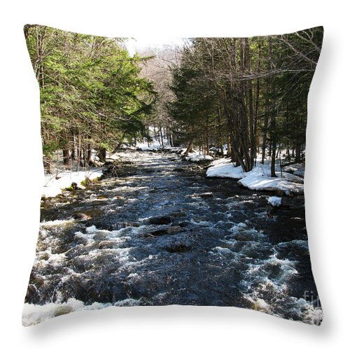 River Throw Pillow featuring the photograph Brook In The Spring by Nancie Johnson
