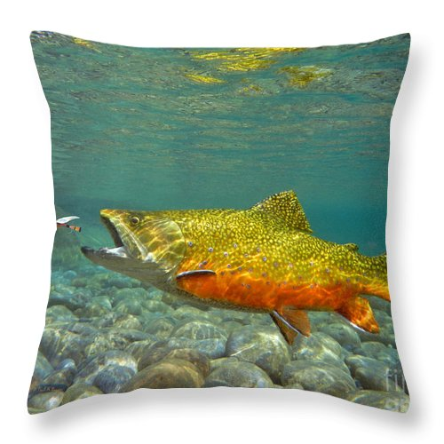 Fish Painting Throw Pillow featuring the mixed media Brook Trout And Royal Coachman by Paul Buggia
