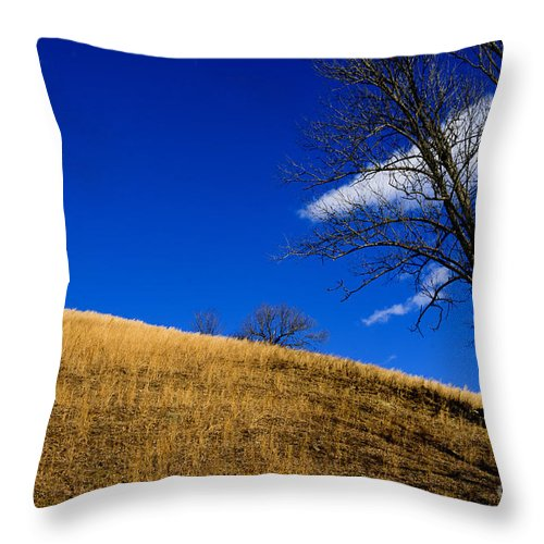 Broomsedge Throw Pillow featuring the photograph Broomsedge On Hill by Thomas R Fletcher