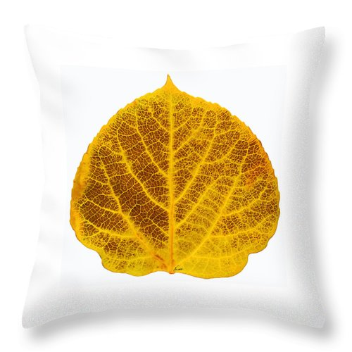 Aspen Leaf Throw Pillow featuring the digital art Brown And Yellow Aspen Leaf 2 by Agustin Goba
