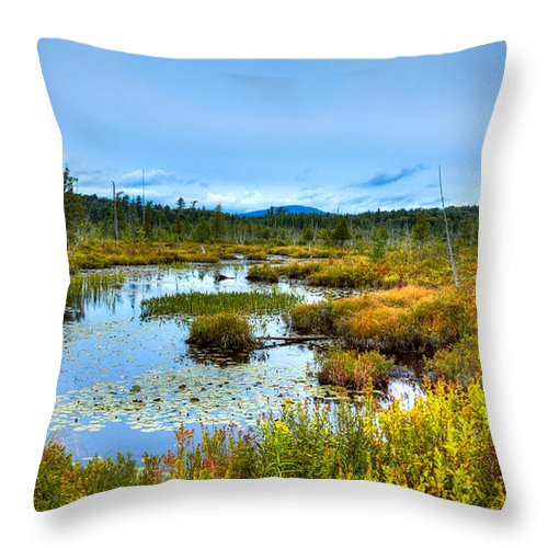 Adirondack's Throw Pillow featuring the photograph Browns Tract Inlet Waterway by David Patterson