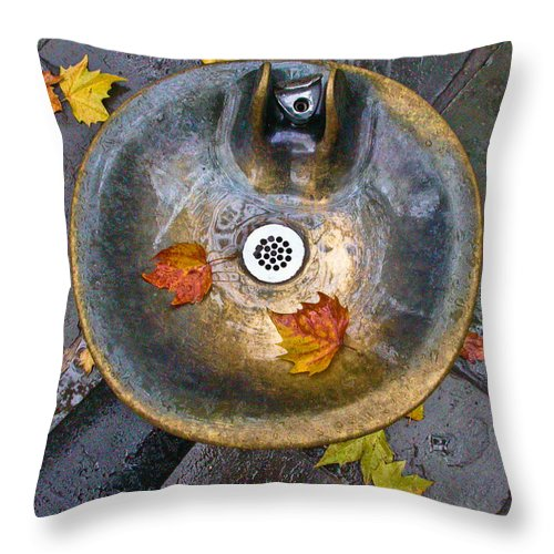 New York City Throw Pillow featuring the photograph Bryant Park Fountain In Autumn by Gary Slawsky