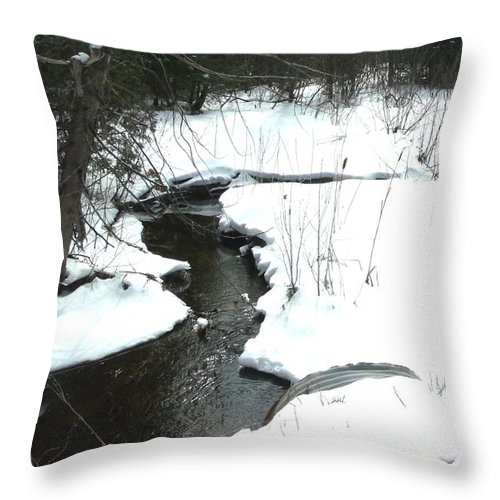 Real Photo Throw Pillow featuring the photograph Bubbling Creek From Culvert In Spring by Gail Matthews