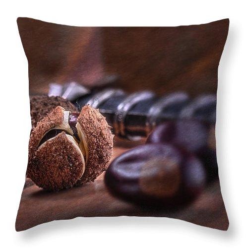 Aesculus Throw Pillow featuring the photograph Buckeye Nut Still Life by Tom Mc Nemar