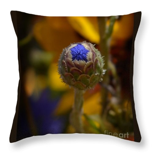 Flower Bud Throw Pillow featuring the photograph Bud Blooming by Lj Lambert