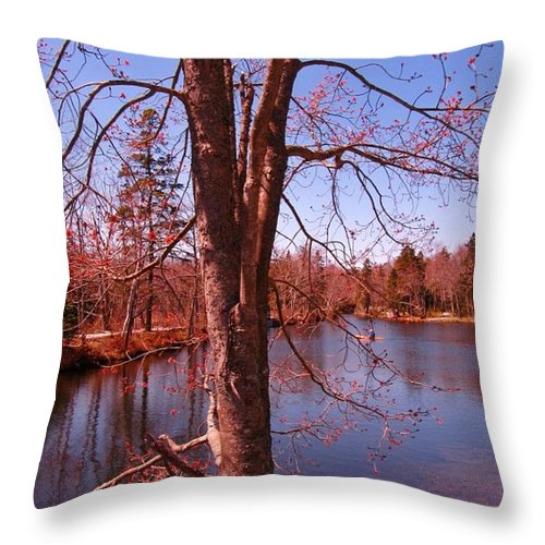 Budding Spring Tree Throw Pillow featuring the photograph Budding Spring Tree by John Malone