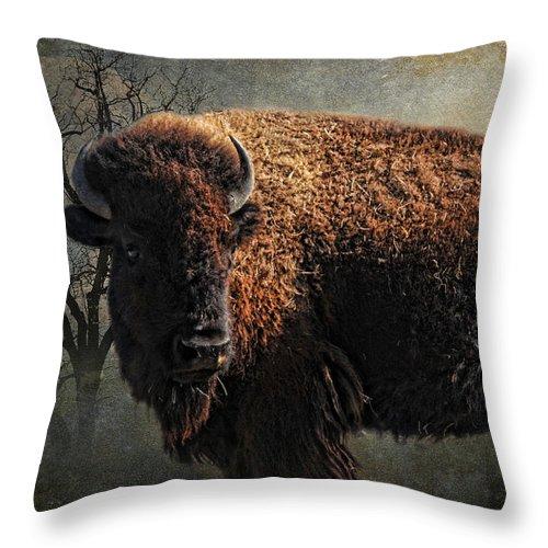Buffalo Throw Pillow featuring the photograph Buffalo Moon by Karen Slagle