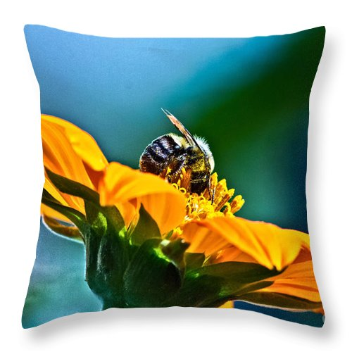 Insect Throw Pillow featuring the photograph Bumble Bee I by Ms Judi