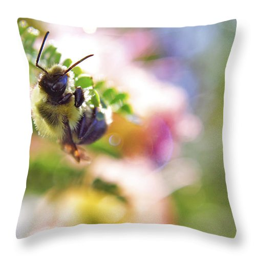 Bumblebee Throw Pillow featuring the photograph Bumblebee Disco by Jason Politte