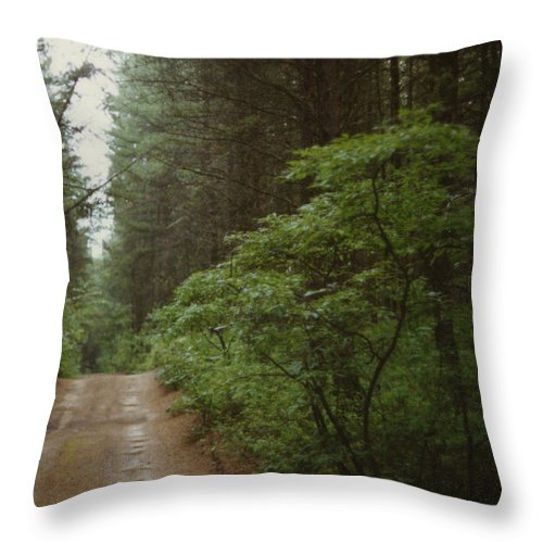 Throw Pillow featuring the photograph Bushroad by Mark Didine