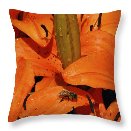 Day Lily Throw Pillow featuring the photograph Busy Bee - 774 by Paul W Faust - Impressions of Light