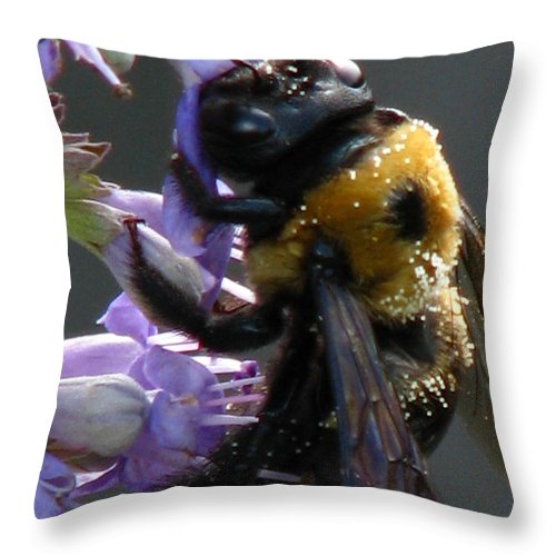 Patzer Throw Pillow featuring the photograph Busy Bee by Greg Patzer