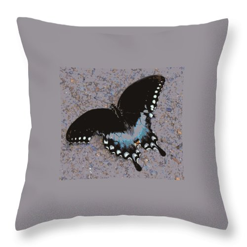 Digital Photography Throw Pillow featuring the digital art Butterfly At Rest by Laurie Pike