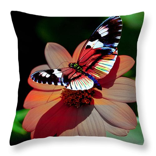 Butterfly Throw Pillow featuring the mixed media Butterfly Dont Fly Away by Marvin Blaine