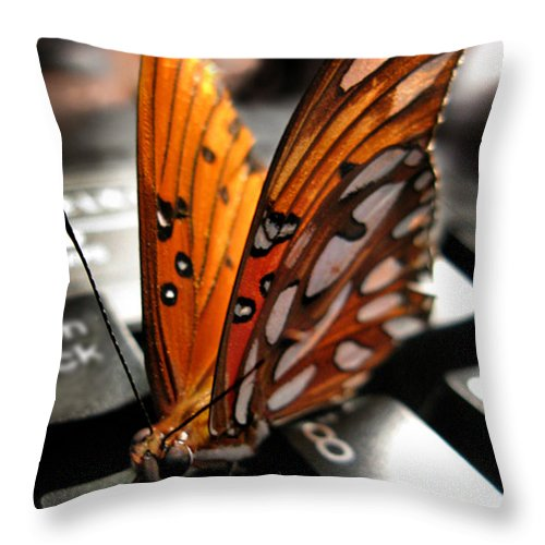 Butterfly Throw Pillow featuring the photograph Butterfly Home At 7 by Jennie Breeze