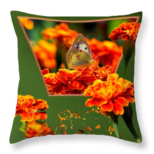 Butterfly Throw Pillow featuring the photograph Butterfly In A Sea Of Orange Floral 02 by Thomas Woolworth
