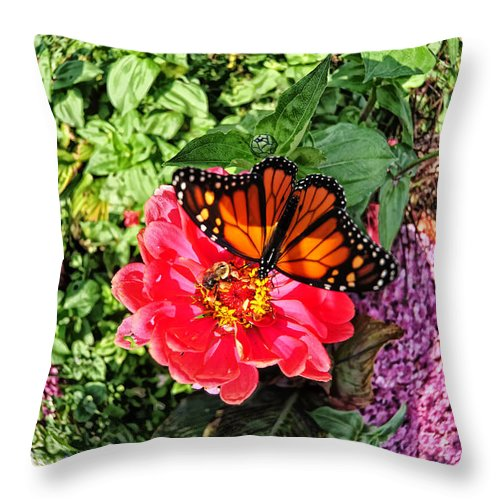 Butterfly Throw Pillow featuring the photograph Butterfly On Flower by Tina Baxter