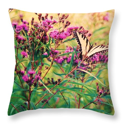 Floral Throw Pillow featuring the painting Butterfly Wildflower by Eric Schiabor