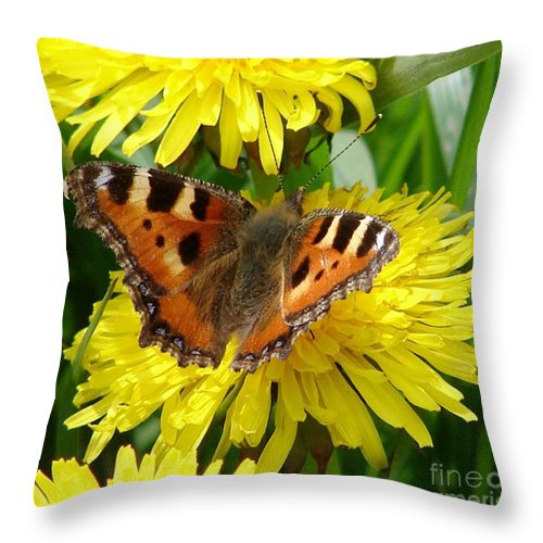 Butterfly Throw Pillow featuring the photograph Butterfly Yellow by Carol Lynch